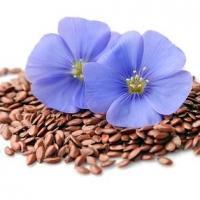 79319326 graines de lin et arriere plans agrandi de fleurs bleues