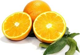 orange douce bio 1