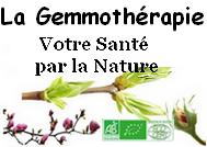 Votre Santé par la Nature - La Gemmothérapie