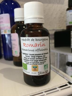 Macerat de romarin 1