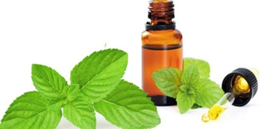 huile essentielle de menthe poivrée peau